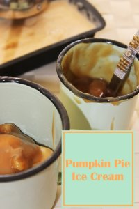 Pumpkin Pie Ice Cream topped with pecan praline sauce