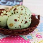 Easter Egg Cake Balls|Speckled Bird Eggs|Chocolate Bird Nest