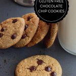 HOMEMADE GLUTEN FREE CHOCOLATE CHIP COOKIES