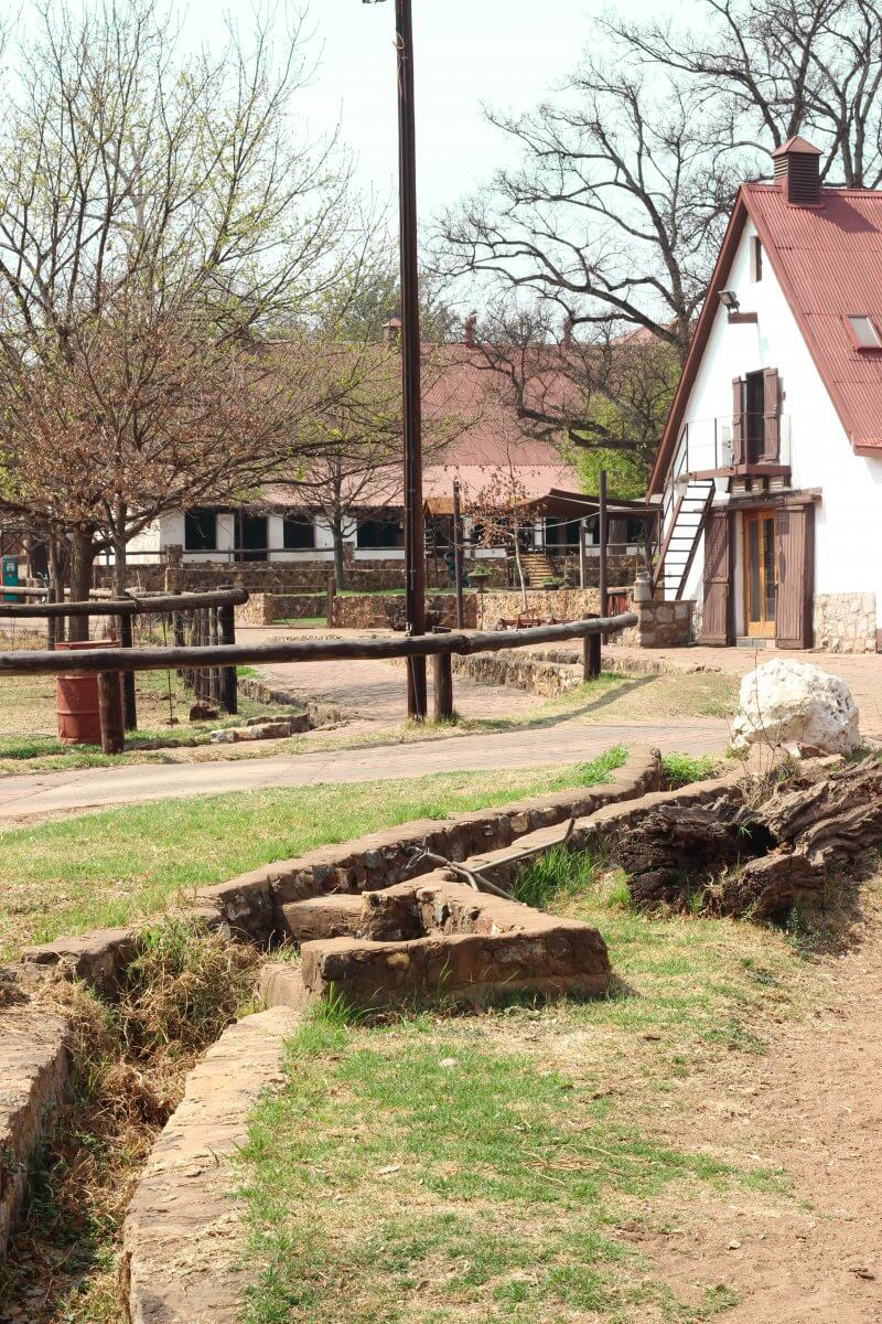 Irene Dairy Farm is a beautiful dairy farm situated in Centurion, Gauteng, South Africa. A 30-minute drive north of Johannesburg on the way to Pretoria.