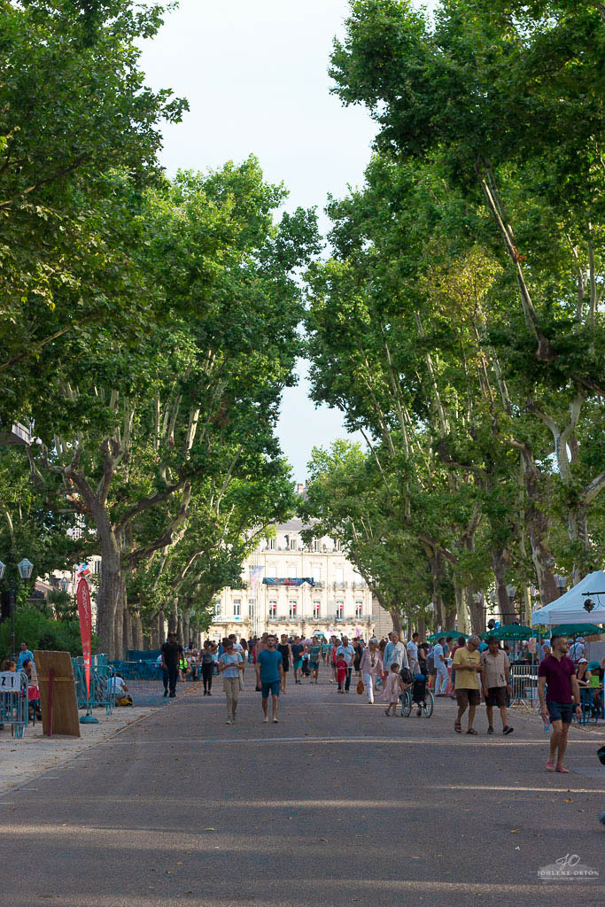 What to do when you visit Montpellier in the south of France. This city is perfect for a family trip as it offers so much to do and see!