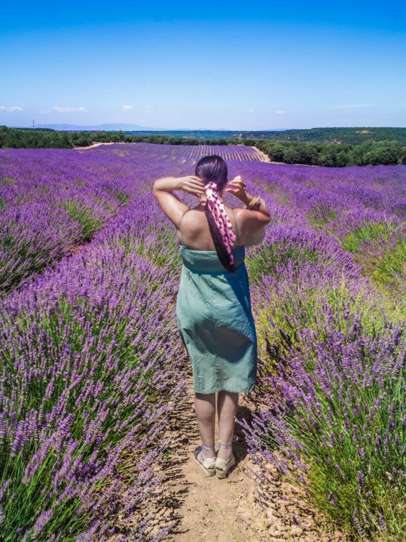 My Top 5 places to visit near Madrid - Brihuega Spain Lavender Fields